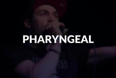 Pharyngeal defined.