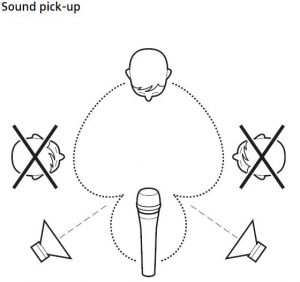 diagram of supercardioid sound pick up for microphones